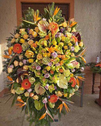 Venac sa strelicijom, anturijumom, gerberom, ružama, ukrasnim kupusom, orhidejom, ljiljanom i karanfilom