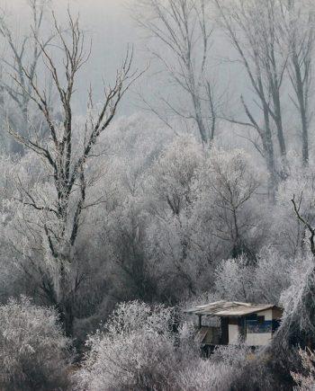 Fotografija Sojenica-zima 525-1