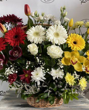 Korpa cvetni mix - XXL 551